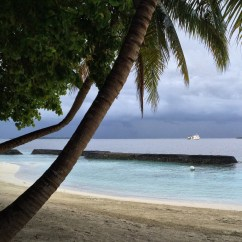 Blue Chair Rum Cover Hire Telford Pure Bliss: Kurumba, Maldives