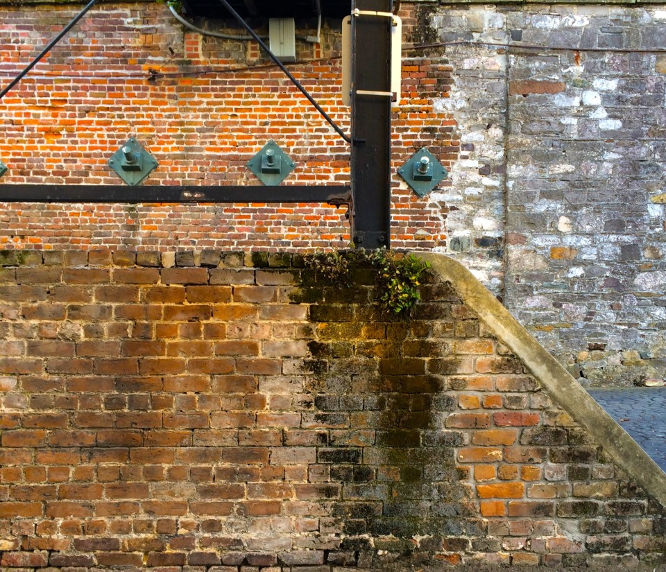 brick wall in Savannah GA, Things to do in Savannah GA, Things to do in Savannah, GA, things to do in Savannah