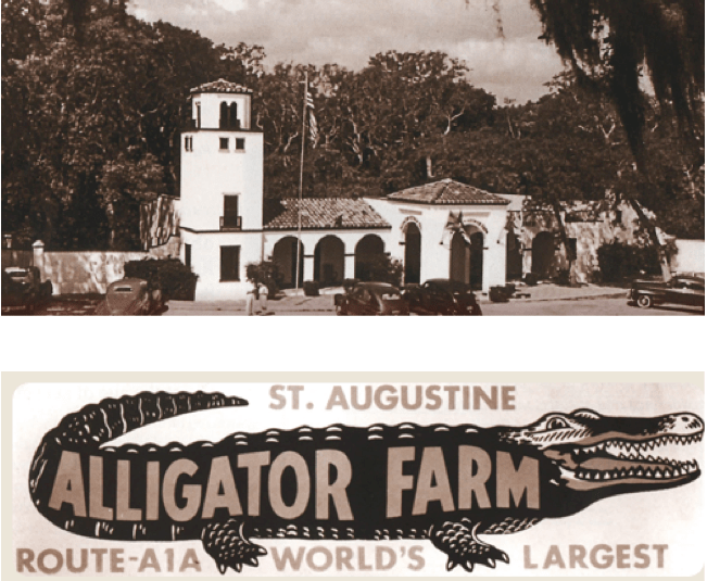 The Alligator Farm - St. Augustine, FL