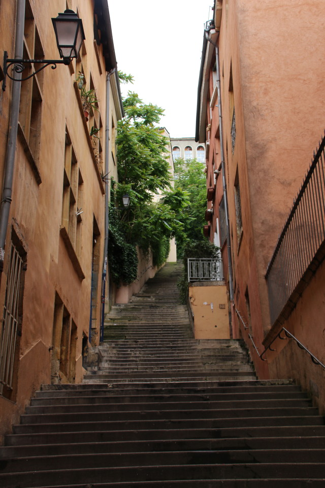 Southern France, Viking Tours, French flowers, Lyon street scene