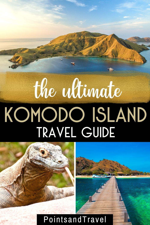 Komodo dragon, Komodo, Komodoisland, Pictures of Komodo dragons, komodo dragon island