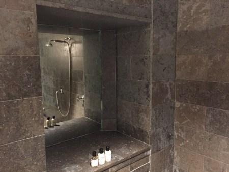 park hyatt washington DC junior suite shower