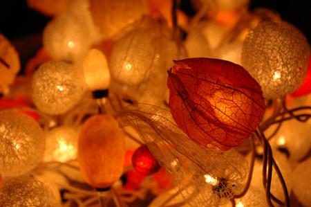 ysailamp.jpg