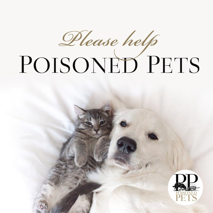 dog cat poisoned pets safe food warnings news recalls alerts