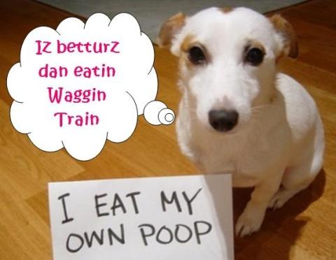 purina waggin train chicken jerky dog treats