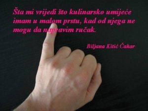 Biljana Kitić Čakar