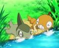 Baggiguane et Coupenotte, deux Pokémon amis !