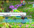 pokemon_rumble_world_05_fr