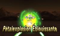 petalexplosion