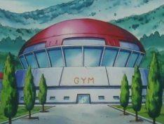 Pokémon_gym