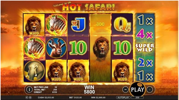 Hot safari- Game Play