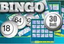 30 Ball Bingo on iPad to play and win