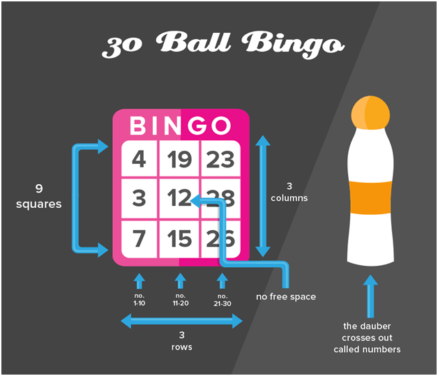 30 ball bingo game play