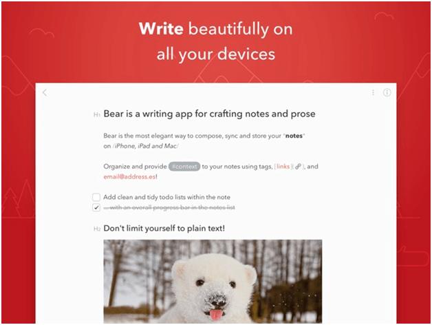 Bear note app