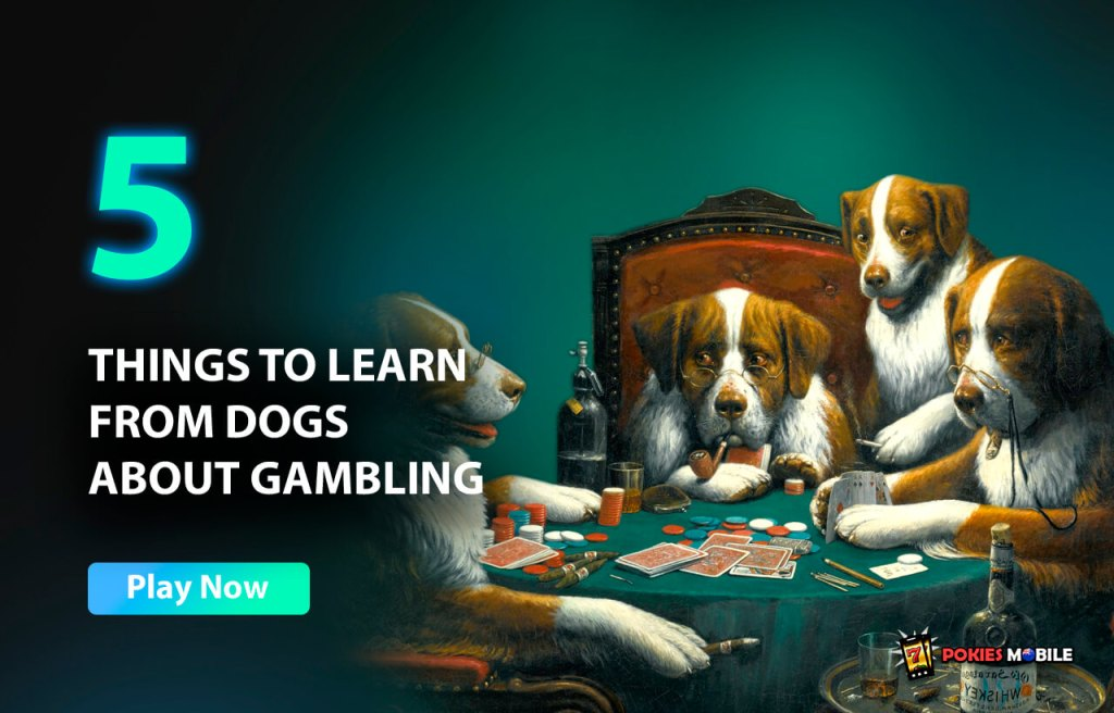 5 Things to Learn from Dogs about Gambling