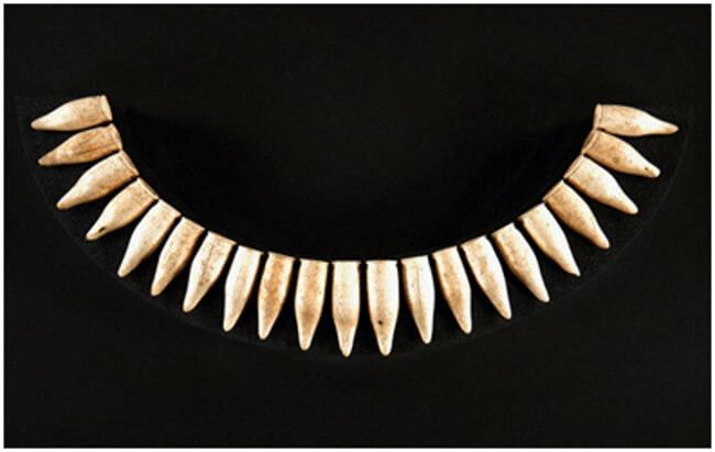 Neck pendants – reel and tooth ornaments