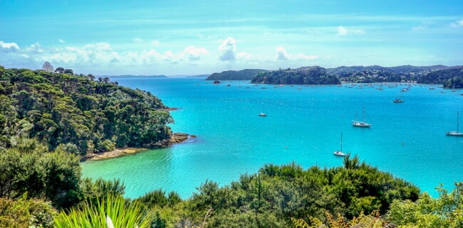 Things to Do in New Zealand Only
