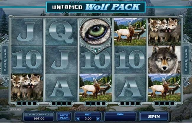 Wild, free Spin and Bonus