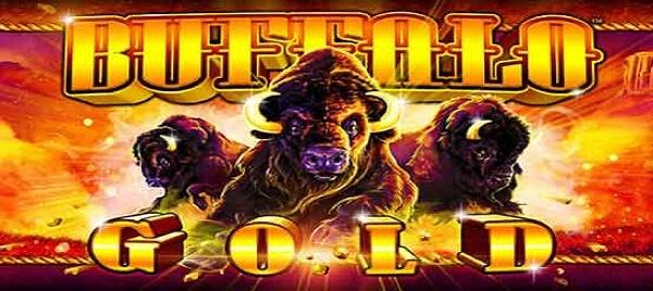 Buffalo gold pokies