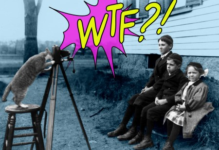 WTF?! Friday funniest insane google searches