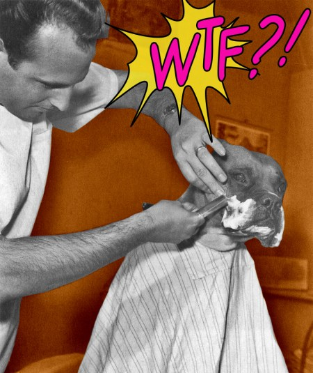 WTF?! Friday, Google Search
