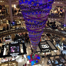 animation-photo-galeries-lafayette