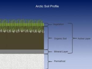 3 July 2016 Soil Samples   PolarTREC