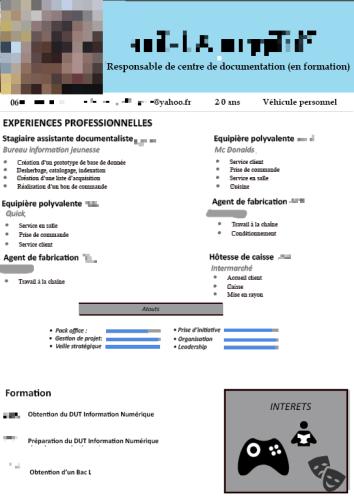 analyse de cv d u0026 39 une  u00e9tudiante en dut infocom option infonum