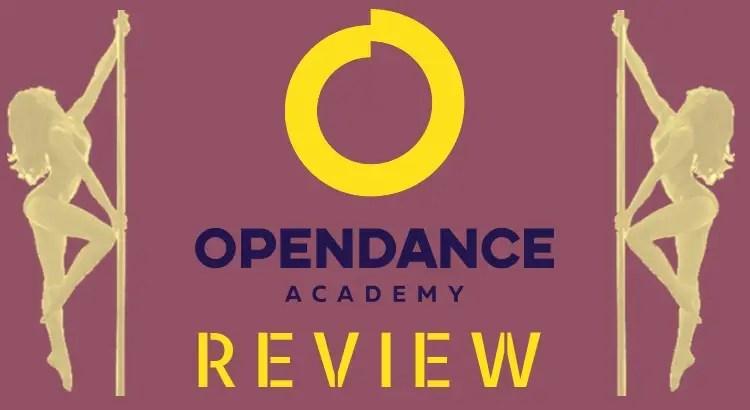 Pole Dance Academy: Open Dance Academy Review