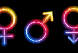 """Feminino ou masculino? Google+ permite """"personalizar"""" definição de gênero"""