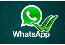 Pesquisa mostra ascensão do Whatsapp e decadência de Twitter e Google Plus no Brasil