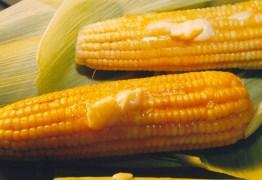 AUMENTANDO A RENDA: Autônomos aproveitam período junino para garantir renda extra com venda de comidas típicas