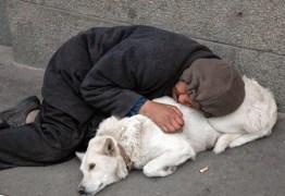 """O verdadeiro amigo ! Quem são os seus verdadeiros """"cachorros"""" ????? Você tem algum ????? – Por Rui Galdino"""