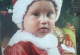 Menino de 3 anos morre ao levar choque de decoração de Natal em praça do RS