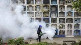 size 810 16 9 mosquito zika 300x169 - China oferece ajuda aos países latino-americanos afetados pelo zika