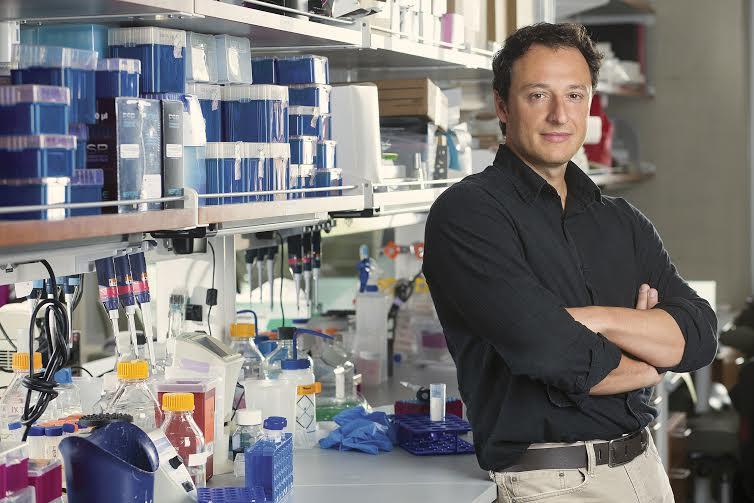 pesquisador - Cientistas afirmam que a cura para o Autismo está bem próxima