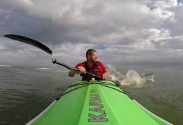 VEJA VÍDEO: Homem é surpreendido por tubarão enquanto remava no seu caiaque
