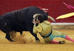CENA FORTE: Toureiro espanhol sobrevive após levar chifrada no rosto – VEJA VÍDEO