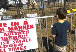 VEJA VÍDEO: Treinadora é atacada por tigre enquanto fazia uma demonstração para uma excursão de escola