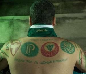 palmeirense 300x261 - Divulgados detalhes da nova camisa do Palmeiras para a temporada 2017