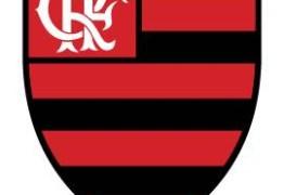 Flamengo tem o maior crescimento nas redes sociais dentre todos os clubes brasileiros