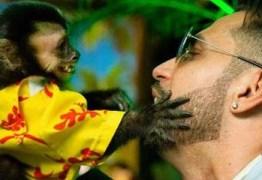 Cantor reencontra macaco de estimação que havia fugido