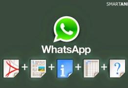 Nova atualização do Whatsapp pode trazer riscos aos usuários