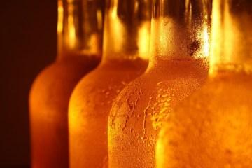Aquecimento global pode deixar a cerveja mais cara