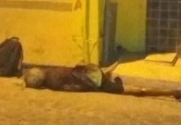 Idoso é assassinado com uma facada no pescoço na Cracolândia, em João Pessoa
