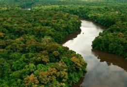MPF pede suspensão de novo decreto para exploração mineral na Amazônia