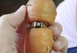 Anel de diamante perdido há 13 anos é encontrado em cenoura