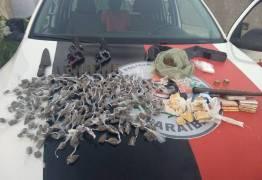 Operação Impacto apreende armas e detém 14 suspeitos por porte e posse ilegal na Paraíba