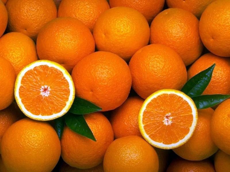 4394023329307610ca2401c682be5c85 - De tanto brigarem pela posse da mesma laranja, Ricardo, Cássio e Maranhão estão vendo agora novos ladrões da fruta por perto - Por Gilvan Freire