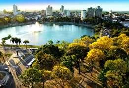 Espetáculo natural dos Ipês Amarelos começa no Parque Solón de Lucena